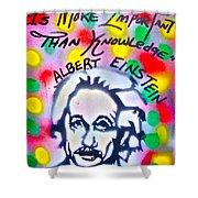 Einstein Imagination Shower Curtain