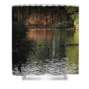 Elder Lake Shower Curtain