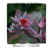 Electric Glo Blossom Shower Curtain
