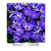 Electric Indigo Garden Shower Curtain