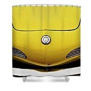 Electric Karmann Shower Curtain