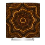 Electric Mandala 6 Shower Curtain