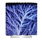 Electrical Discharge Lichtenberg Figure Shower Curtain by Ted Kinsman