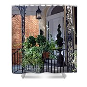Elegant Entrance Shower Curtain