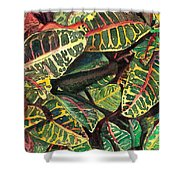 Elena's Crotons Shower Curtain