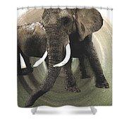Elephant Awake Shower Curtain