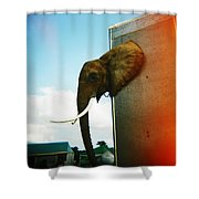 Elephant Box Shower Curtain