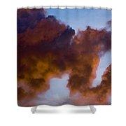 Elephant Cloud Shower Curtain