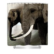 Elephant Meet Shower Curtain