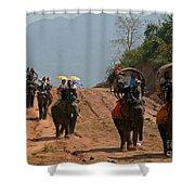 Elephant Rides Shower Curtain