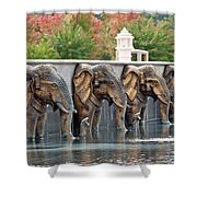 Elephants Of The Mandir Shower Curtain