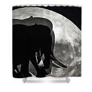 Elephants On Moonlight Walk Shower Curtain