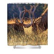 Elk 2 Elk Shower Curtain