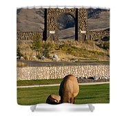 Elk At Yellowstone Entrance Shower Curtain