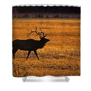 Elk In Yellowstone National Park Shower Curtain