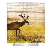Elk Wanders On Yellow Landscape Shower Curtain