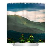 Emerald And Gold Shower Curtain