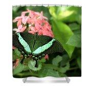 Emerald Swallowtail Shower Curtain