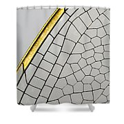 Emperor Dragonfly Anax Imperator Wing Shower Curtain