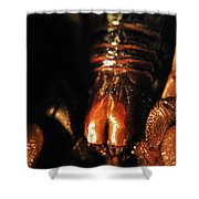 Emperor Scorpion 3.0 Shower Curtain