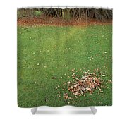 Empty Lawn With A Little Heap Of Leaves Scraped Together Shower Curtain