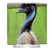 Emu Shower Curtain