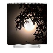 Enchanted By Moonlight Shower Curtain