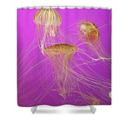 Enchanted Jellyfish 1 Shower Curtain