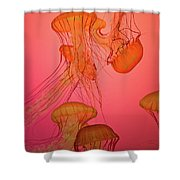 Enchanted Jellyfish 3 Shower Curtain