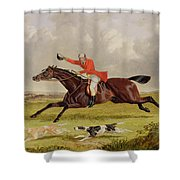 Encouraging Hounds Shower Curtain