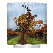 End Of The Vineyard Row Shower Curtain