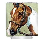 English Paint Shower Curtain