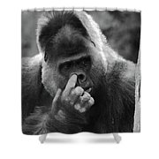 Enjoy The Moment Shower Curtain