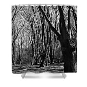 Epping Forest Shower Curtain