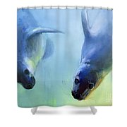Equally Fascinating Shower Curtain