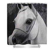 Equestrian Silver Shower Curtain