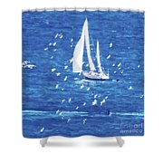 Escorted By Seagulls Shower Curtain