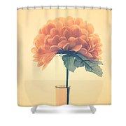 Estillo - 01i2 Shower Curtain