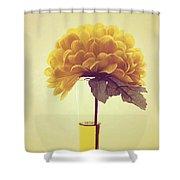 Estillo - S03-y01r Shower Curtain