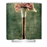 Estillo Vase - S02et01 Shower Curtain by Variance Collections