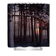 Ethereal Forest Shower Curtain