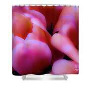 Ethereal Pink Tulips Shower Curtain