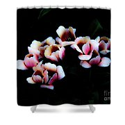 Ethereal Tulips 2 Shower Curtain