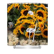 European Markets - Sunflowers And Roses Shower Curtain