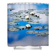 European White Waterlily Shower Curtain
