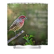 Evening Finch Greeting Card With Verse Shower Curtain