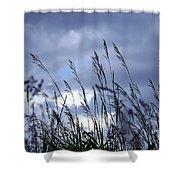Evening Grass Shower Curtain