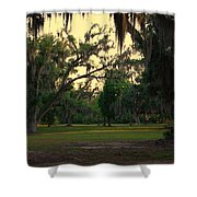 Evening In The Mossy Oaks Shower Curtain