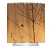 Everyone Enjoys A Hawaiian Sunset Shower Curtain