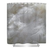 Evidence Of Angels Shower Curtain
